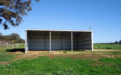 Ranbuild provides a customisable range of storage sheds for grain, hay, machinery and general storage in our rural sheds range.  We also custom design and build commercial sheds for businesses and government organisations.